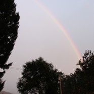 You might find a rainbow….